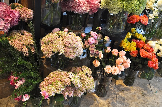 9. flower shop avant garden dallas texas