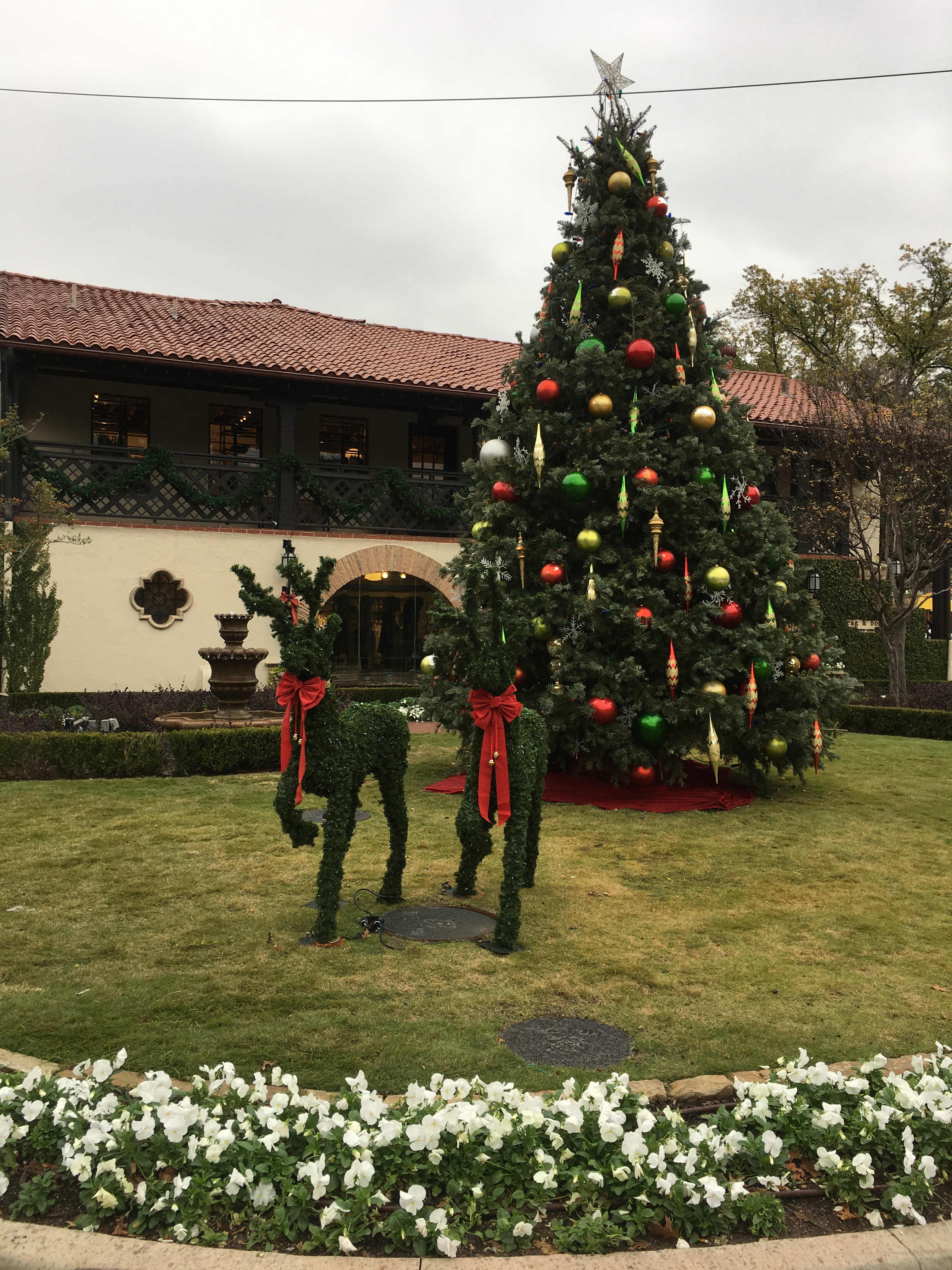 Guests are greeted by our 24-foot tall tree at the corner entrance of Douglas and Livingston Avenue.